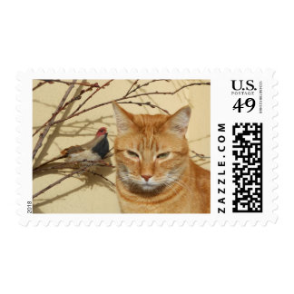 Red tabby cat with bird postage stamps.