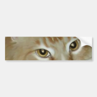 Red Tabby Maine Coon Bumper Sticker