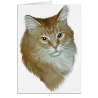 Red Tabby Maine Coon Cards