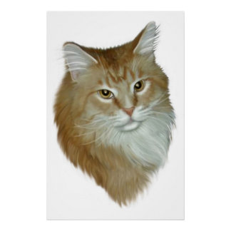 Red Tabby Maine Coon Poster