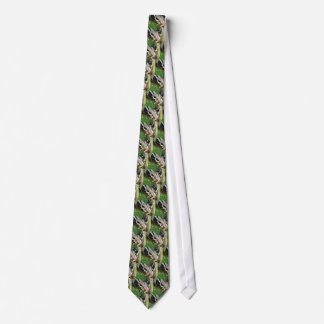 Red Tail Boa Tie