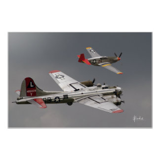 Red Tail Escort Poster