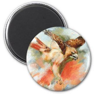Red Tail Hawk 2 Inch Round Magnet