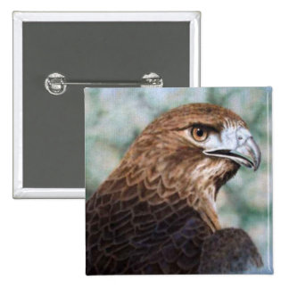 Red-tail Hawk airbrush 2 Inch Square Button