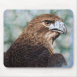 Red-tail Hawk airbrush Mouse Pad
