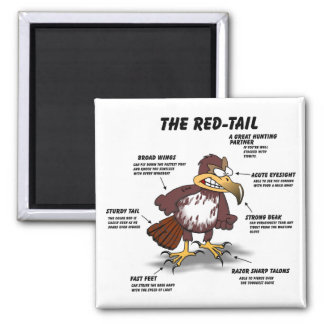 Red-tail Hawk Cartoon 2 Inch Square Magnet