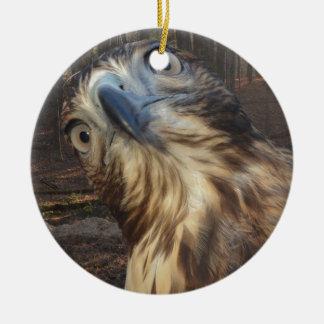 Red tail hawk ceramic ornament