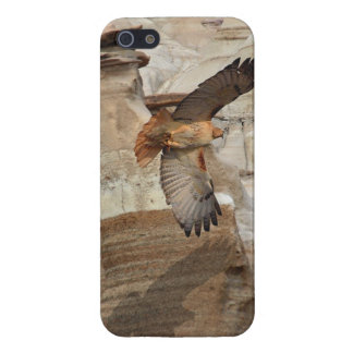 "Red-Tail Hawk ""Hoodoo Hawks"" Wild-Birds Raptors Case For iPhone SE/5/5s"
