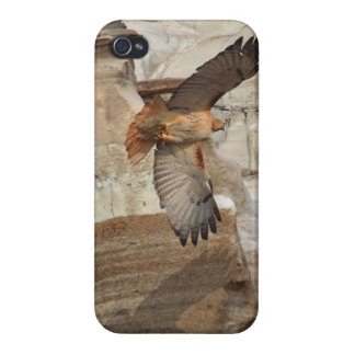 "Red-Tail Hawk ""Hoodoo Hawks"" Wild-Birds Raptors Covers For iPhone 4"