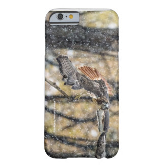 Red Tail Hawk in the Snow iPhone 6 case
