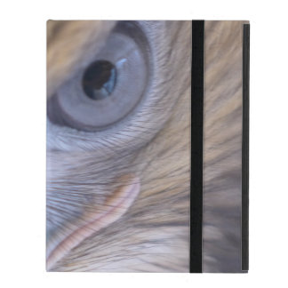 Red-tail Hawk iPad Cover