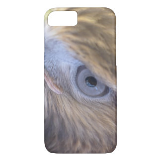 Red tail hawk iPhone 7 case