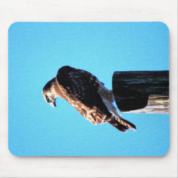 Red Tail Hawk Mouse Pad