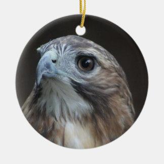 Red Tail Hawk ornament