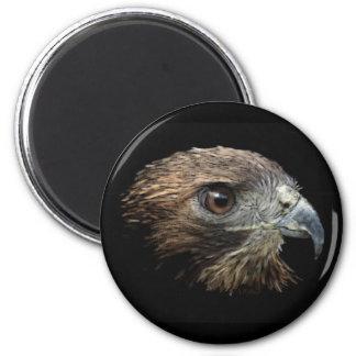 Red-tail Hawk pastel 2 Inch Round Magnet