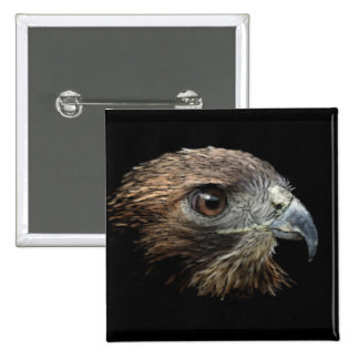 Red-tail Hawk pastel 2 Inch Square Button