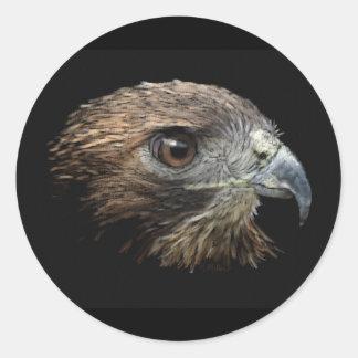 Red-tail Hawk pastel Classic Round Sticker