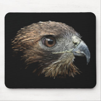 Red-tail Hawk pastel Mouse Pad