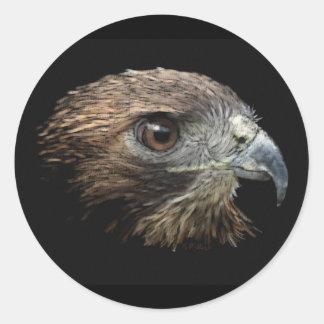 Red-tail Hawk pastel Round Stickers