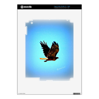 Red Tail Hawk Picture Decals For iPad 2