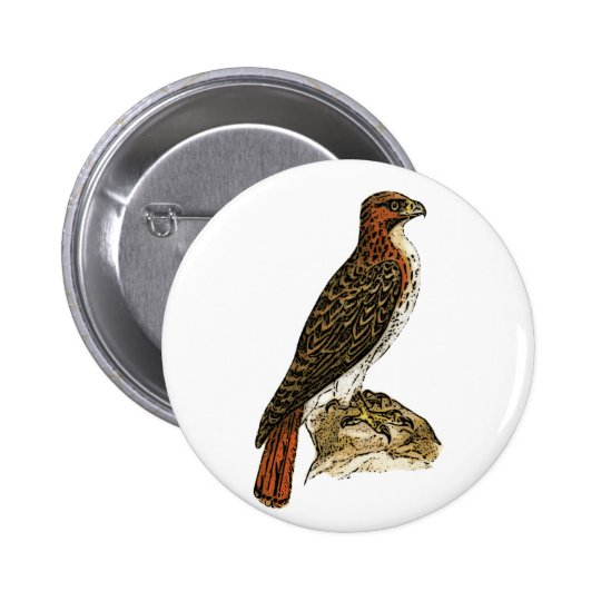 Red Tail Hawk Pinback Button