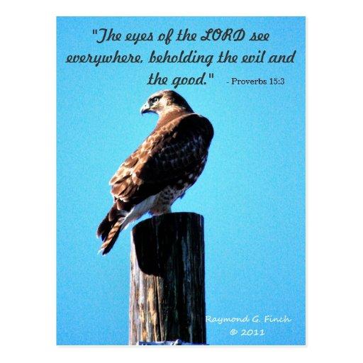 Red Tail Hawk - Proverbs 15:3 Postcard