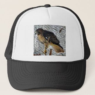 Red Tail Hawk Trucker Hat