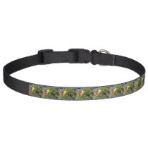 red-tail sirena mermaid pet collar
