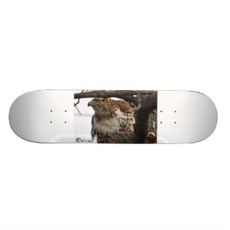 Red-tail Skateboard