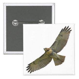 red-tail soaring Button