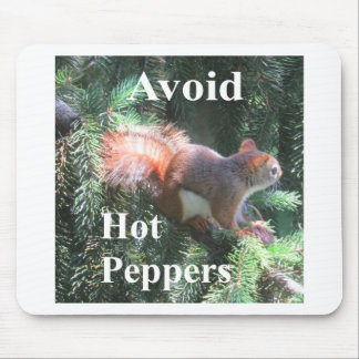 Red tail Squirrel Mouse Pad