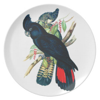 Red tailed, Black (Banksian) Cockatoos. Dinner Plate