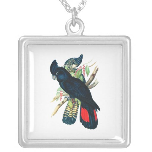 Red tailed, Black (Banksian) Cockatoos. Square Pendant Necklace