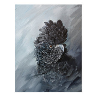 Red tailed black Cockatoo gifts for parrot lovers Postcard