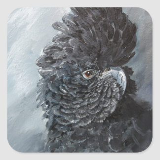 Red tailed black Cockatoo gifts for parrot lovers Square Sticker