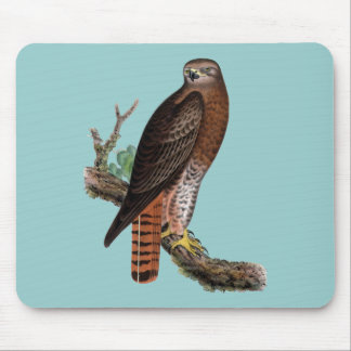Red-tailed Black Hawk Mouse Pad
