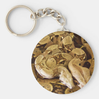 Red Tailed Boas Keychain