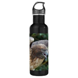 Red-Tailed Hawk 24oz Water Bottle