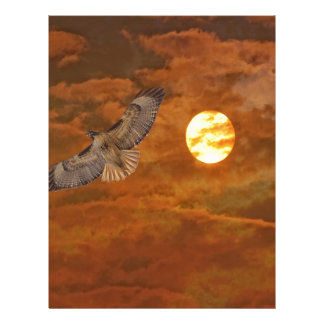 Red Tailed Hawk and Red Skies Letterhead