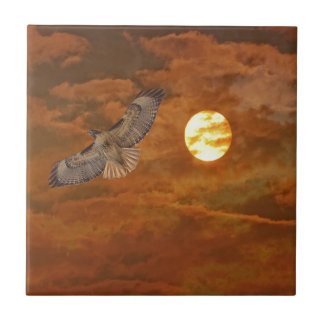 Red Tailed Hawk and Red Skies Tile