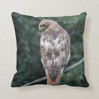 Red Tailed Hawk Back Feathers Pillow