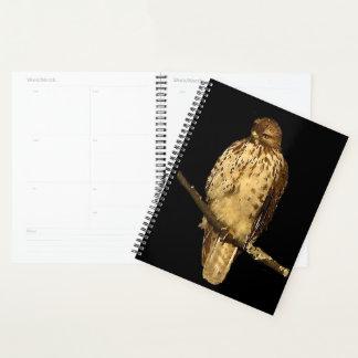 Red Tailed Hawk Bird Animal Nature Planner