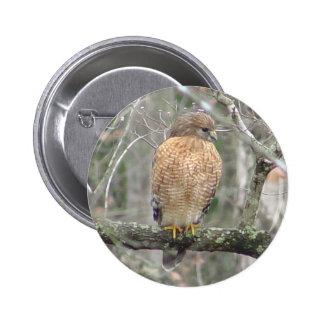 Red Tailed Hawk Bird Button