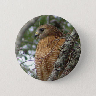 Red Tailed Hawk Button