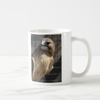 Red-tailed Hawk/Buzzard Coffee Mug