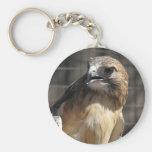 Red-tailed Hawk/Buzzard Key Chain