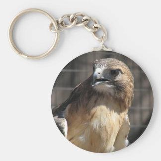 Red-tailed Hawk/Buzzard Keychain