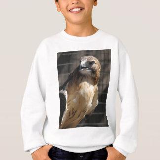 Red-tailed Hawk/Buzzard Sweatshirt