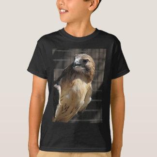Red-tailed Hawk/Buzzard T-Shirt