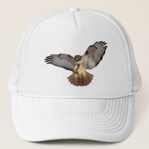 Red_tailed Hawk Cap